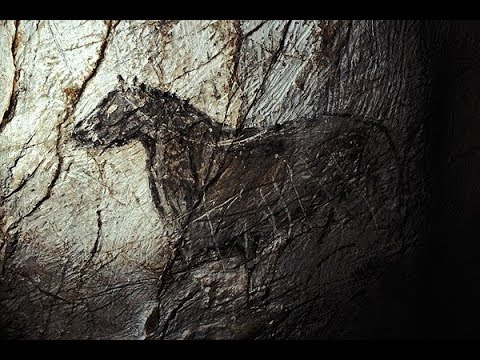 Grotte Cosquer Animal | Cryptid Wiki | FANDOM powered by Wikia
