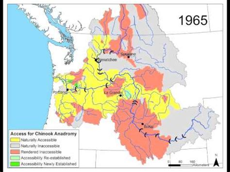 Columbia River Basin Salmon Extirpation Map - YouTube