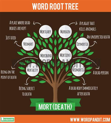 Know all about Mort Root Word and words related to it