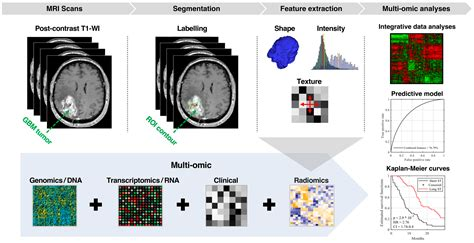 Cancers   Free Full-Text   Integration of Radiomic and