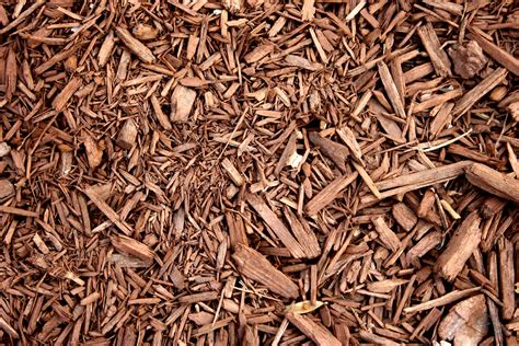 Free picture: brown, wood, chipboard, mulch, texture